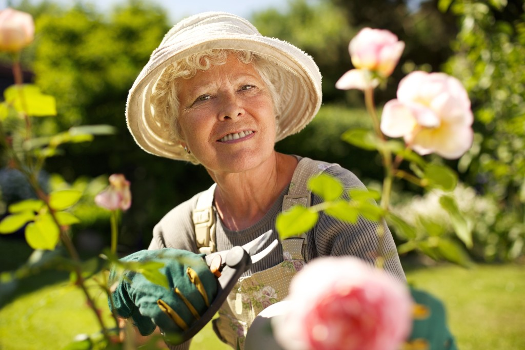 Senior woman with a pruning shears looking at you smiling in her garden. Old woman gardening on a sunny day.